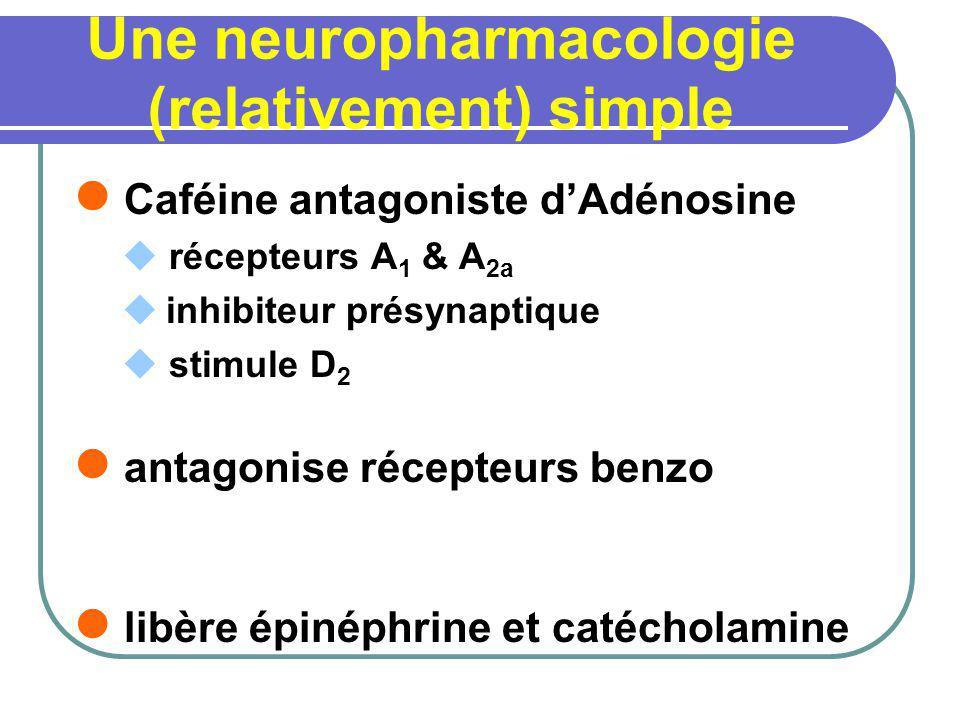 Une neuropharmacologie (relativement) simple Caféine antagoniste dAdénosine récepteurs A 1 & A 2a inhibiteur présynaptique stimule D 2 antagonise réce