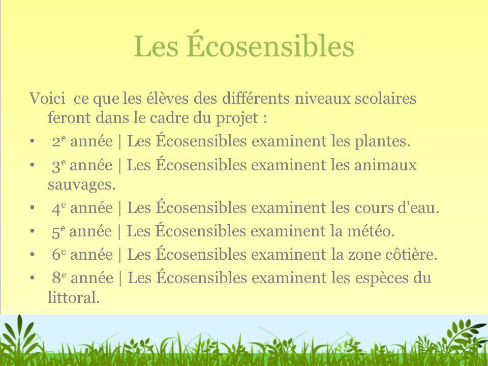 Les Écosensibles Voici ce que les élèves des différents niveaux scolaires feront dans le cadre du projet : 2 e année | Les Écosensibles examinent les
