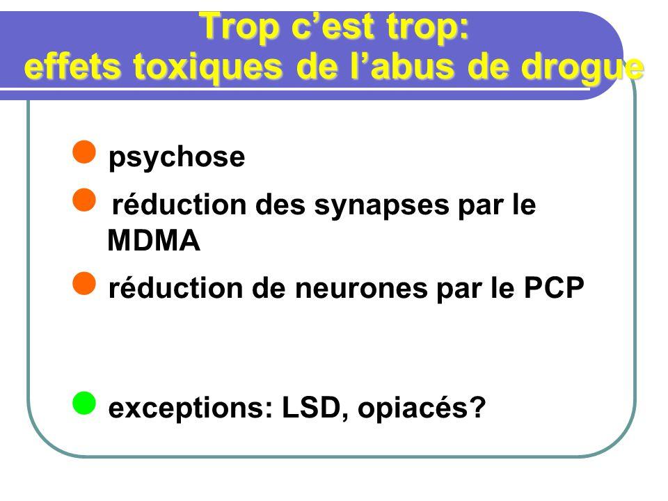Trop cest trop: effets toxiques de labus de drogue psychose réduction des synapses par le MDMA réduction de neurones par le PCP exceptions: LSD, opiac