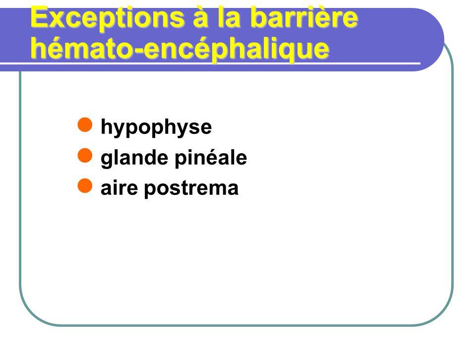 Exceptions à la barrière hémato-encéphalique hypophyse glande pinéale aire postrema