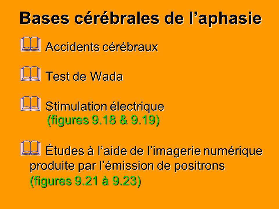 Bases cérébrales de laphasie Accidents cérébraux Accidents cérébraux Test de Wada Test de Wada Stimulation électrique (figures 9.18 & 9.19) Stimulatio