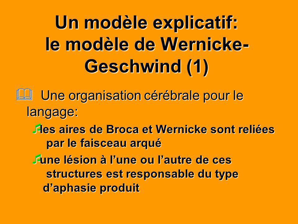 Un modèle explicatif: le modèle de Wernicke- Geschwind (1) Une organisation cérébrale pour le langage: Une organisation cérébrale pour le langage: les