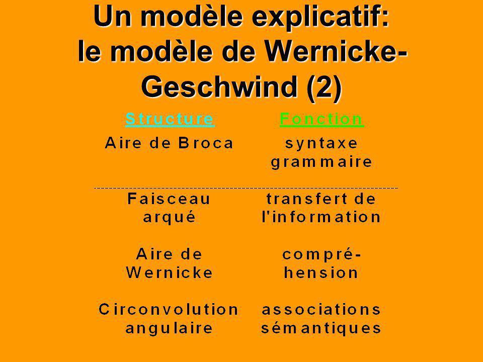 Un modèle explicatif: le modèle de Wernicke- Geschwind (2)