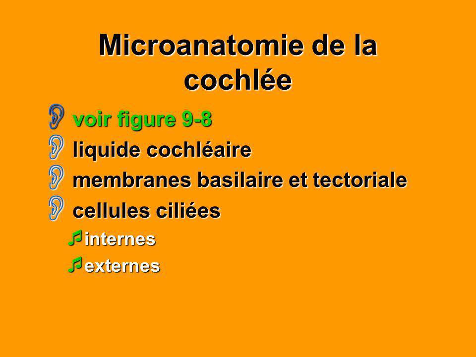Microanatomie de la cochlée voir figure 9-8 voir figure 9-8 liquide cochléaire liquide cochléaire membranes basilaire et tectoriale membranes basilair
