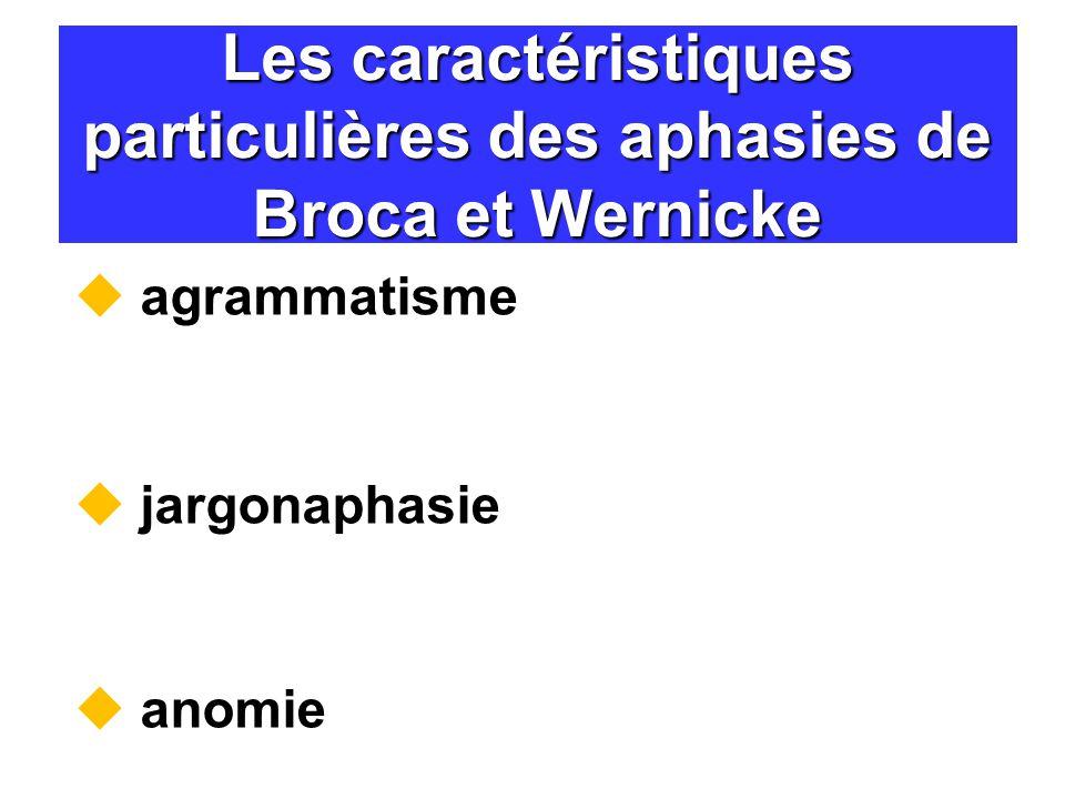Les caractéristiques particulières des aphasies de Broca et Wernicke agrammatisme jargonaphasie anomie