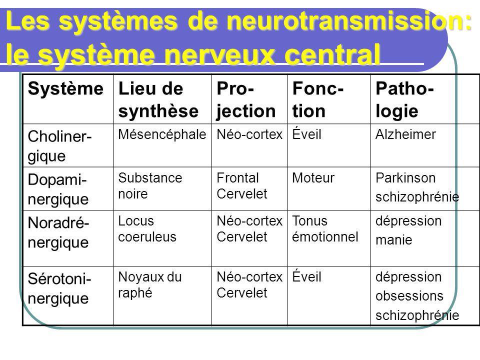 Les systèmes de neurotransmission: le système nerveux central SystèmeLieu de synthèse Pro- jection Fonc- tion Patho- logie Choliner- gique MésencéphaleNéo-cortexÉveilAlzheimer Dopami- nergique Substance noire Frontal Cervelet MoteurParkinson schizophrénie Noradré- nergique Locus coeruleus Néo-cortex Cervelet Tonus émotionnel dépression manie Sérotoni- nergique Noyaux du raphé Néo-cortex Cervelet Éveildépression obsessions schizophrénie
