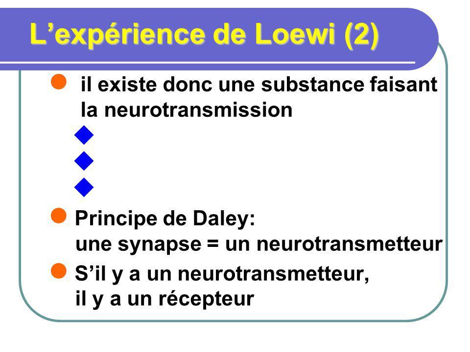 Lexpérience de Loewi (2) il existe donc une substance faisant la neurotransmission Principe de Daley: une synapse = un neurotransmetteur Sil y a un ne