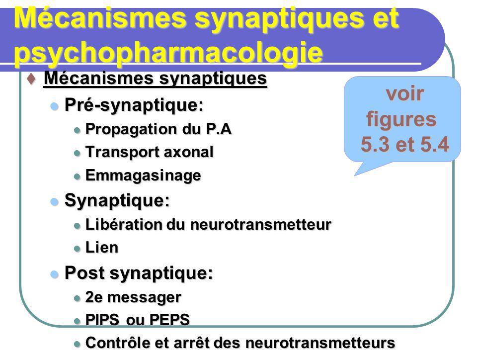 Mécanismes synaptiques et psychopharmacologie Mécanismes synaptiques Mécanismes synaptiques Pré-synaptique: Pré-synaptique: Propagation du P.A Propaga