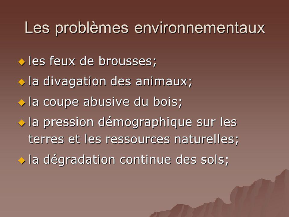 Les problèmes environnementaux les feux de brousses; les feux de brousses; la divagation des animaux; la divagation des animaux; la coupe abusive du b