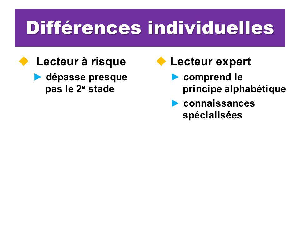 Différences individuelles Lecteur à risque dépasse presque pas le 2 e stade Lecteur expert comprend le principe alphabétique connaissances spécialisées