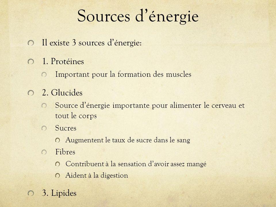Sources dénergie Il existe 3 sources dénergie: 1.