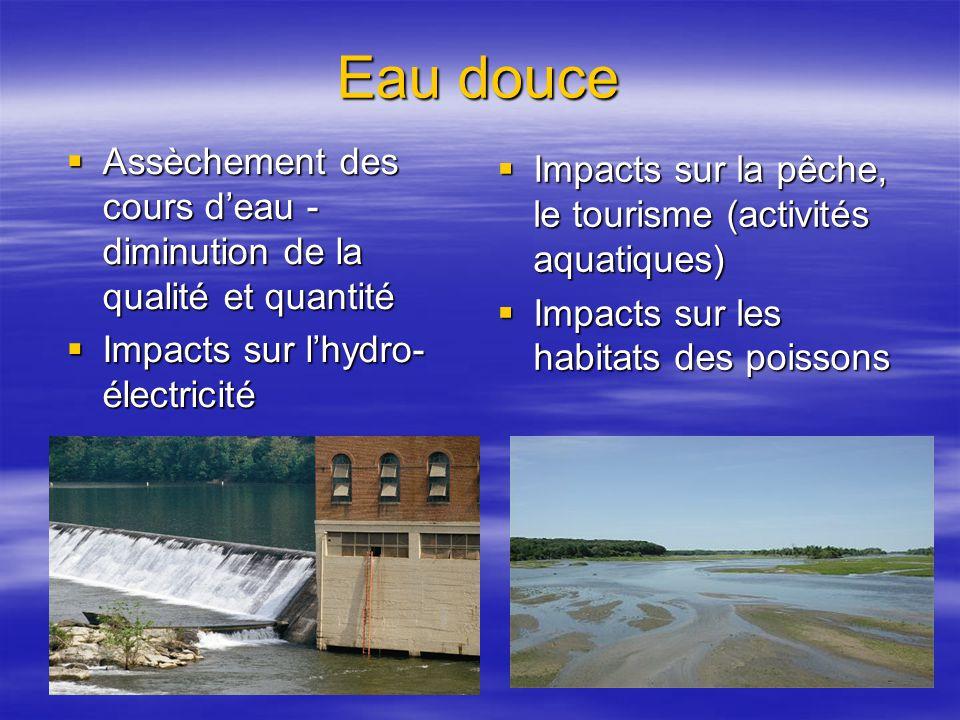 Eau douce Assèchement des cours deau - diminution de la qualité et quantité Assèchement des cours deau - diminution de la qualité et quantité Impacts sur lhydro- électricité Impacts sur lhydro- électricité Impacts sur la pêche, le tourisme (activités aquatiques) Impacts sur la pêche, le tourisme (activités aquatiques) Impacts sur les habitats des poissons Impacts sur les habitats des poissons