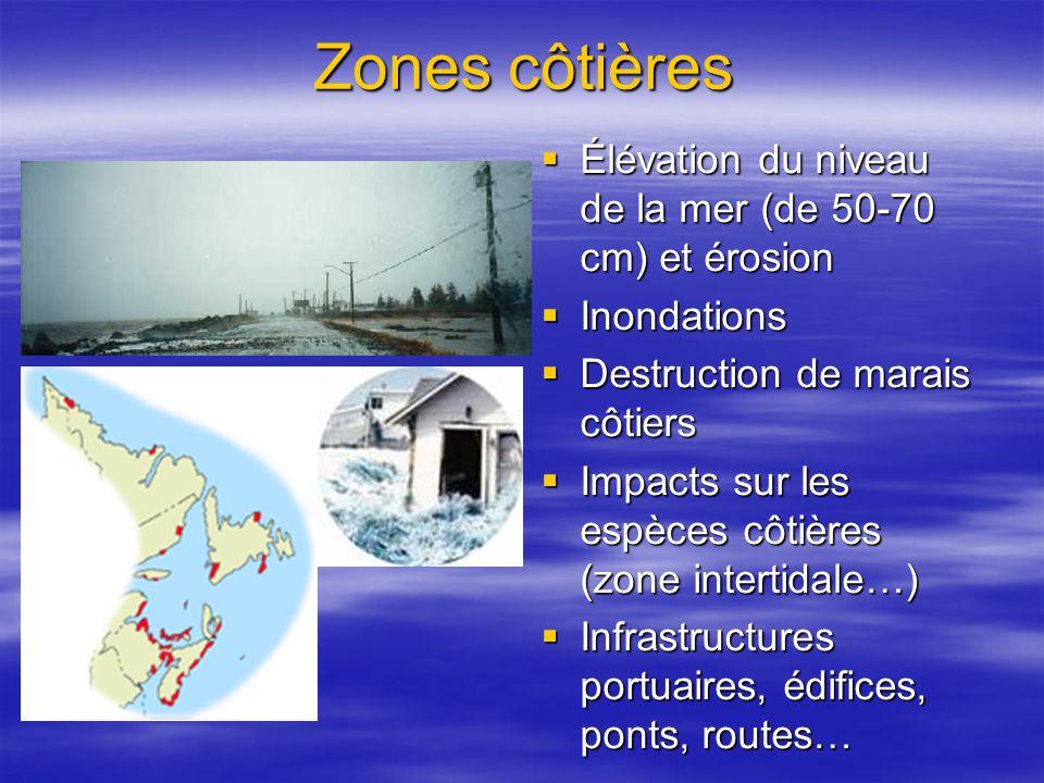 Zones côtières Élévation du niveau de la mer (de 50-70 cm) et érosion Élévation du niveau de la mer (de 50-70 cm) et érosion Inondations Inondations Destruction de marais côtiers Destruction de marais côtiers Impacts sur les espèces côtières (zone intertidale…) Impacts sur les espèces côtières (zone intertidale…) Infrastructures portuaires, édifices, ponts, routes… Infrastructures portuaires, édifices, ponts, routes…