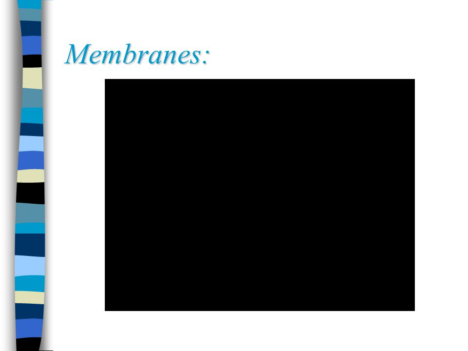 Membranes: