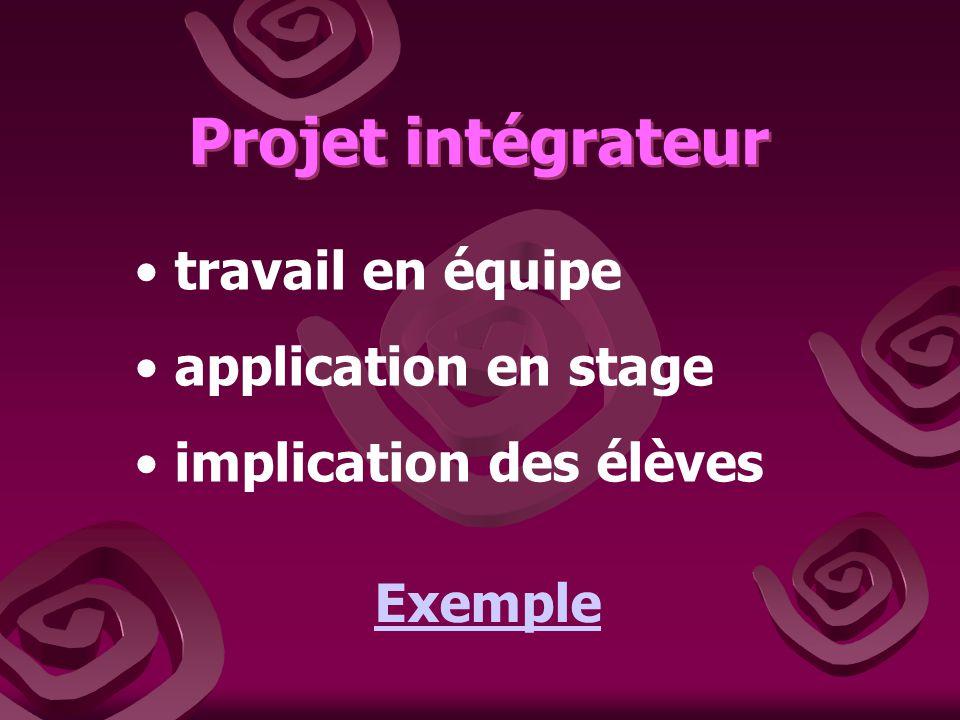 Projet intégrateur Projet intégrateur travail en équipe application en stage implication des élèves Exemple
