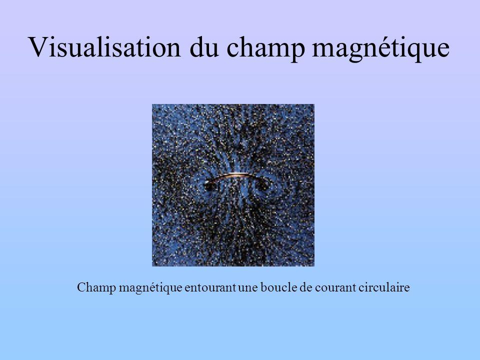 Visualisation du champ magnétique Champ magnétique entourant une boucle de courant circulaire
