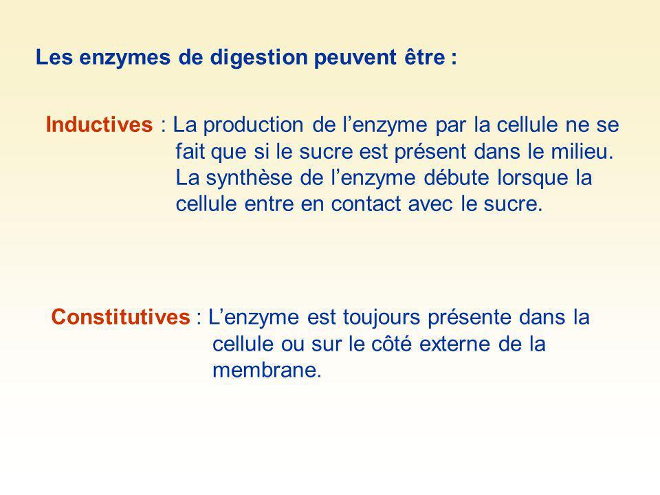 Les enzymes de digestion peuvent être : Inductives : La production de lenzyme par la cellule ne se fait que si le sucre est présent dans le milieu. La