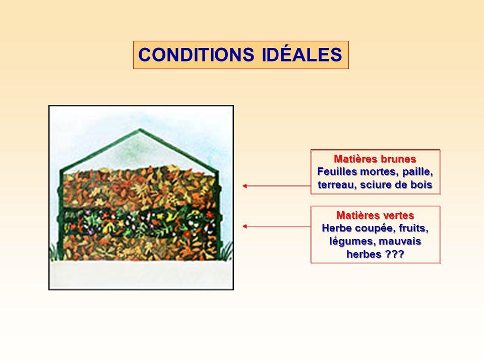 CONDITIONS IDÉALES À AJOUTER AVEC MODÉRATION Gazon coupé, feuilles de chêne et de noyer (tannin), aiguilles de conifères, fumiers À AJOUTER AVEC MODÉRATION Gazon coupé, feuilles de chêne et de noyer (tannin), aiguilles de conifères, fumiers À ÉVITER Viande, poissons, produits laitiers Matières grasses et os Litières d animaux Mauvais en graines Gazon traité aux pesticides À ÉVITER Viande, poissons, produits laitiers Matières grasses et os Litières d animaux Mauvais en graines Gazon traité aux pesticides