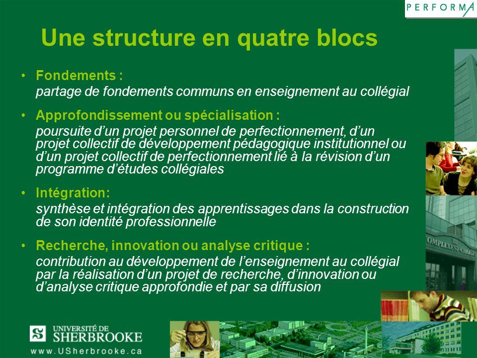 Une structure en quatre blocs Fondements : partage de fondements communs en enseignement au collégial Approfondissement ou spécialisation : poursuite