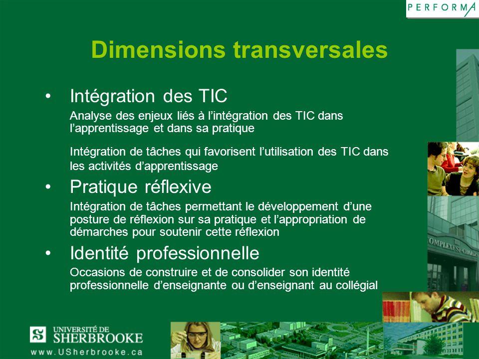 Dimensions transversales Intégration des TIC Analyse des enjeux liés à lintégration des TIC dans lapprentissage et dans sa pratique Intégration de tâc