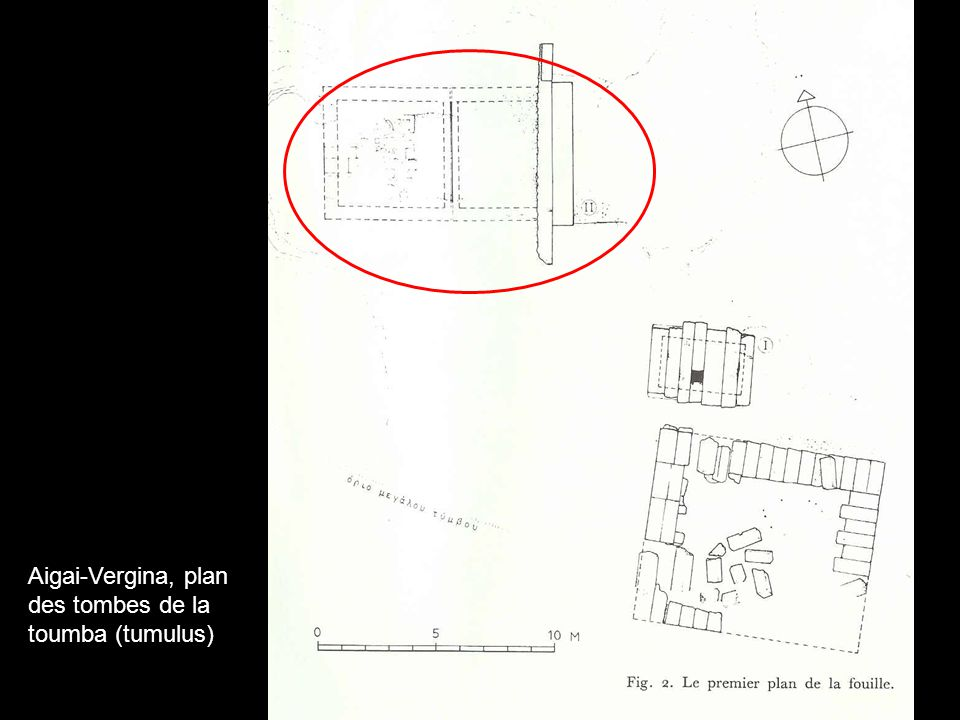 Aigai-Vergina, plan des tombes de la toumba (tumulus)