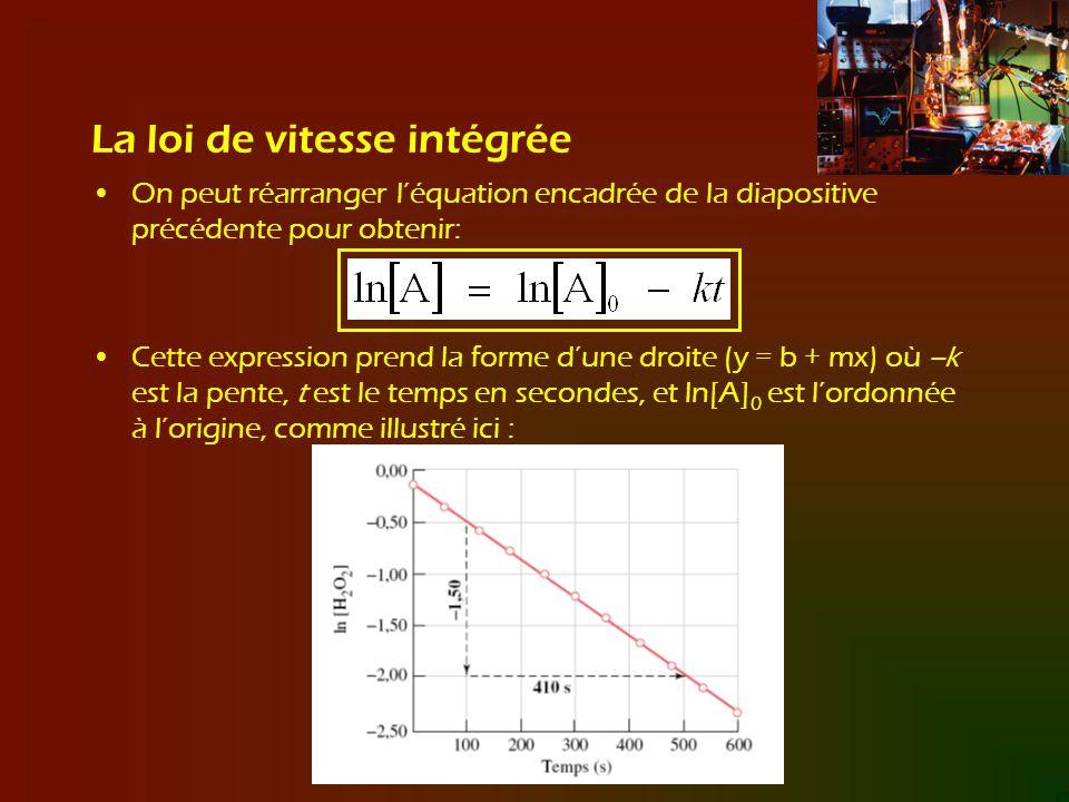 La loi de vitesse intégrée On peut réarranger léquation encadrée de la diapositive précédente pour obtenir: Cette expression prend la forme dune droit