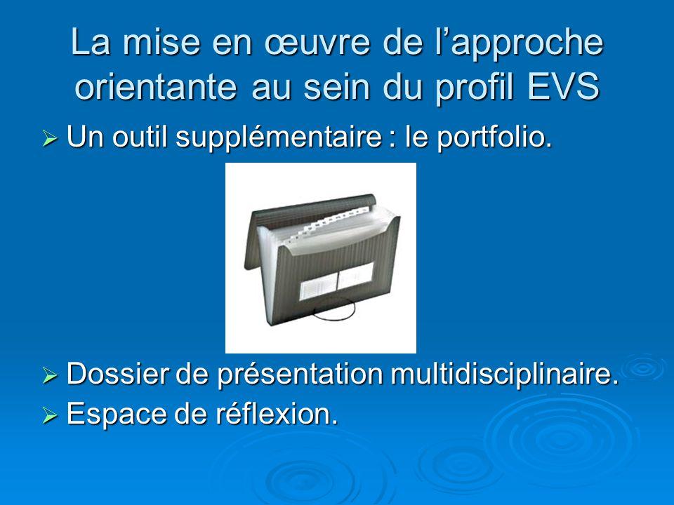 La mise en œuvre de lapproche orientante au sein du profil EVS Un outil supplémentaire : le portfolio. Un outil supplémentaire : le portfolio. Dossier