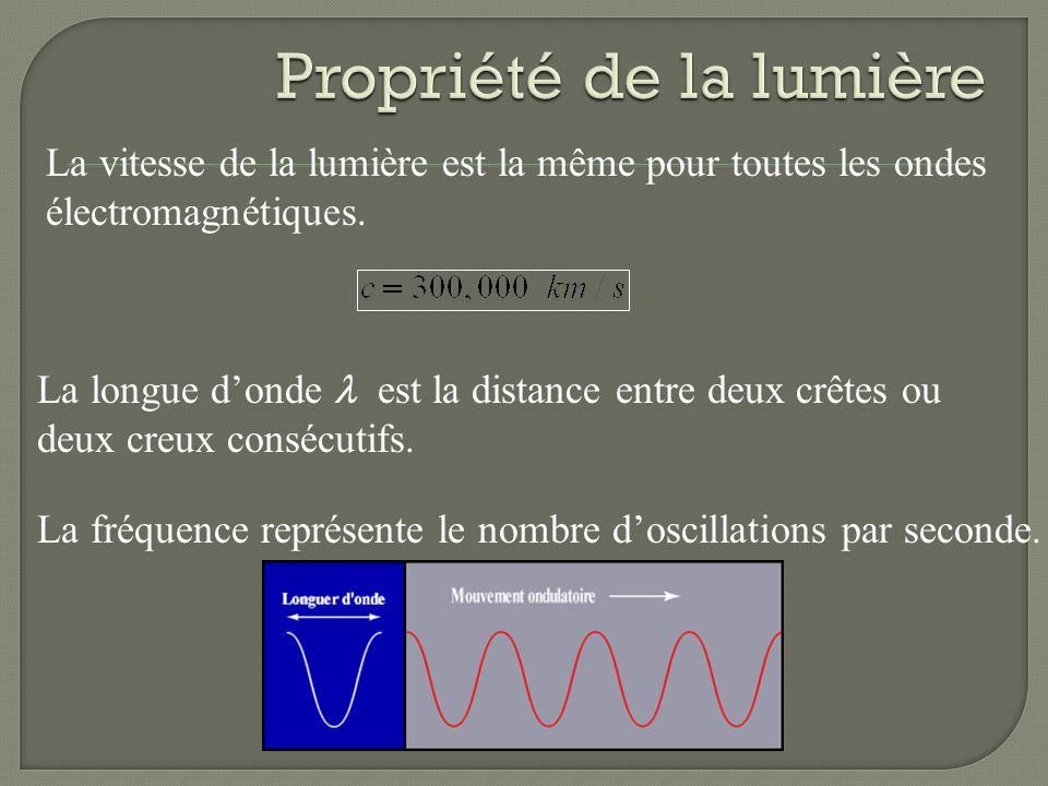On peut décomposer la lumière blanche avec laide dun prisme. La longueur donde de la lumière visible se situe entre 400 nm (bleu) et 700 nm (rouge).