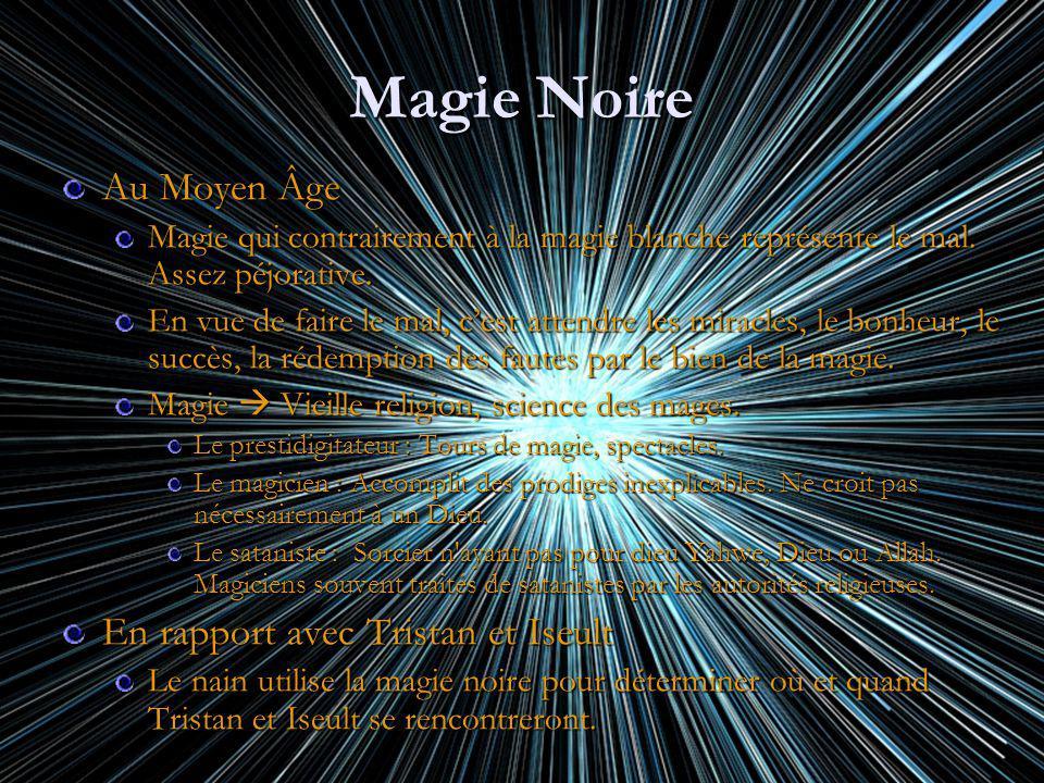 Magie Noire Au Moyen Âge Magie qui contrairement à la magie blanche représente le mal. Assez péjorative. En vue de faire le mal, cest attendre les mir