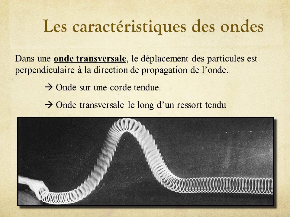 Les caractéristiques des ondes Dans une onde longitudinale, le déplacement des particules a la même direction que la vitesse de londe; Onde sonore Onde longitudinale le long dun ressort tendu