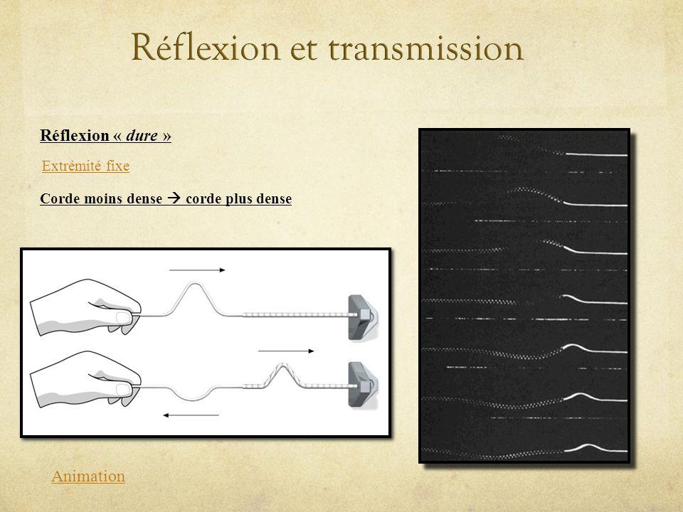 Réflexion « dure » Animation Extrémité fixe Corde moins dense corde plus dense