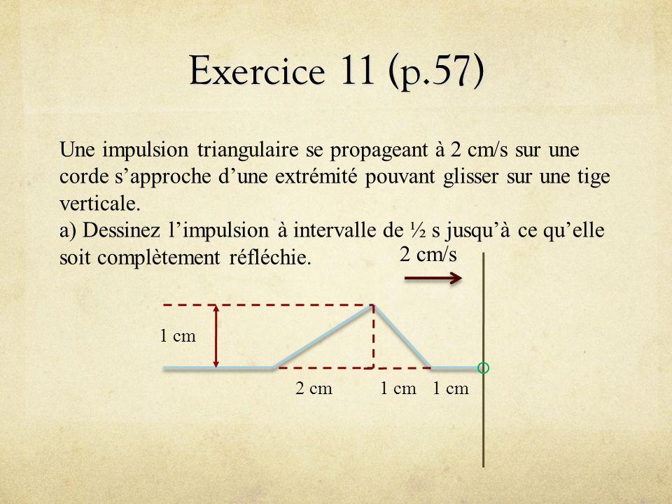 Exercice 11 (p.57) Une impulsion triangulaire se propageant à 2 cm/s sur une corde sapproche dune extrémité pouvant glisser sur une tige verticale. a)