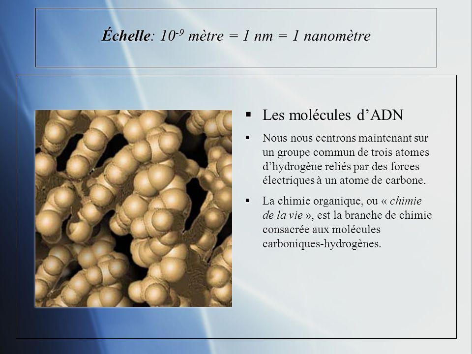 Échelle: 10 -9 mètre = 1 nm = 1 nanomètre Les molécules dADN Nous nous centrons maintenant sur un groupe commun de trois atomes dhydrogène reliés par des forces électriques à un atome de carbone.