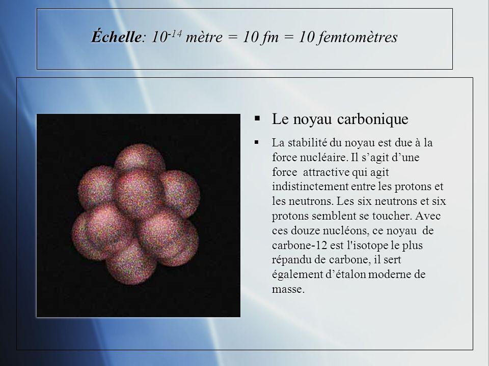 Échelle: 10 -14 mètre = 10 fm = 10 femtomètres Le noyau carbonique La stabilité du noyau est due à la force nucléaire. Il sagit dune force attractive