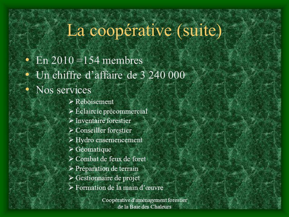 Coopérative d'aménagement forestier de la Baie des Chaleurs