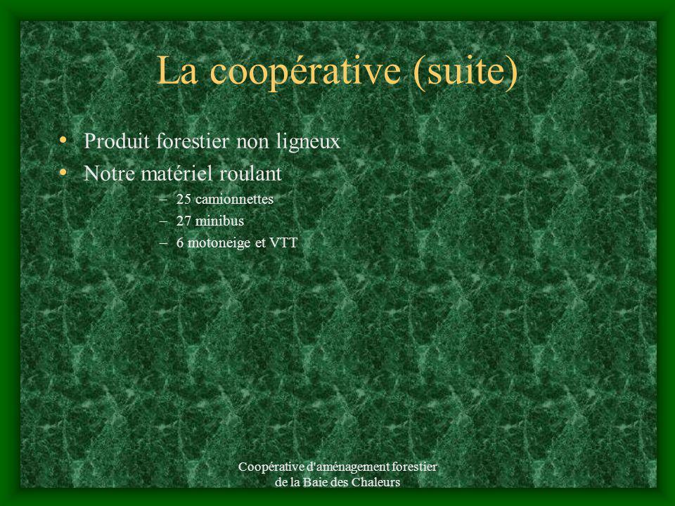 La coopérative (suite) En 2010 =154 membres Un chiffre daffaire de 3 240 000 Nos services Reboisement Éclaircie précommercial Inventaire forestier Con