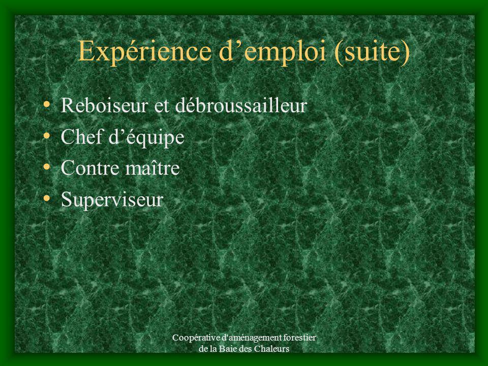 Coopérative d'aménagement forestier de la Baie des Chaleurs Expérience demploi Un seul employeur depuis 1982 Coopérative daménagement forestier de la