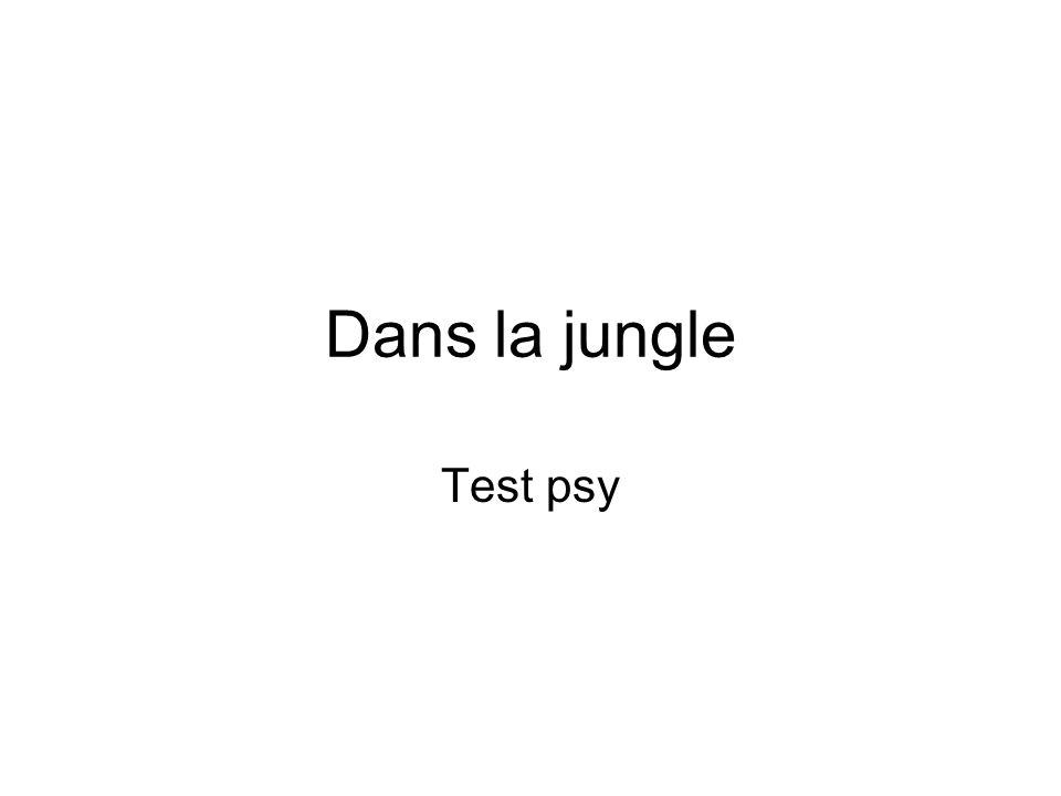 test Imagine que tu es au milieu de la jungle et que tu trouves une cabane bordée d une rivière.