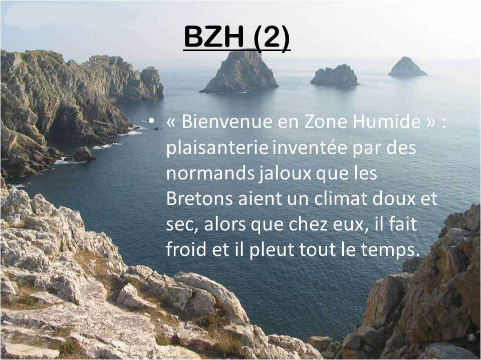 B Z H contraction de Breizh, ce sont des autocollants que les Parisiens mettent à larrière de leur voiture afin de se reconnaître quand ils sont en Bretagne (il y a 20 ans il était interdit aux Bretons de coller B Z H à larrière de leurs R 16)