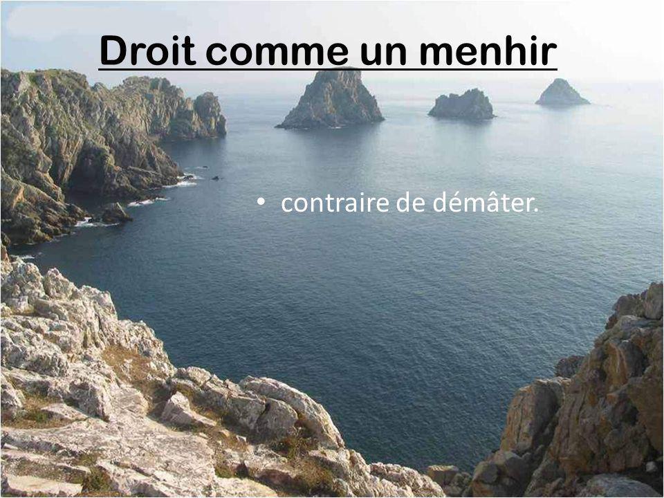 Dolmen (table de pierre) caillou préféré des Bretons (un dolmen de prédilection).