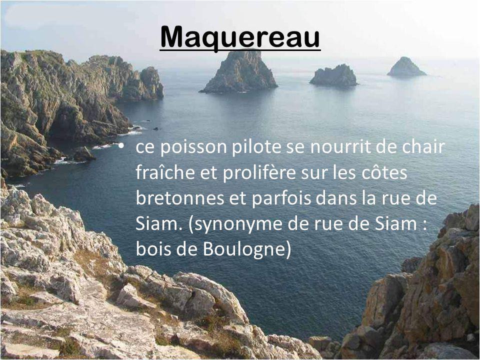 Kouign Aman pâtisserie bretonne agréée Slim Fast, à lusage exclusif du Parisien dans lunique but de se foutre de son accent quand il demande dans une boulangerie « un coinje amande, sil vous plaît ».