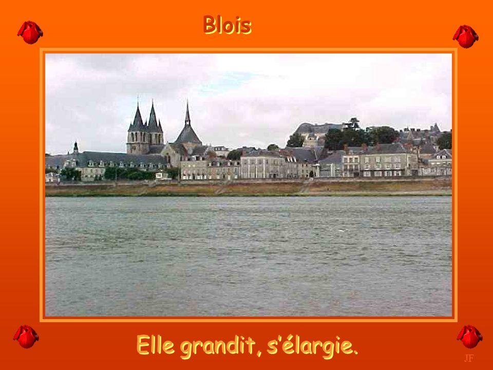 La Beauté des bords de Loire. JF Beaugency
