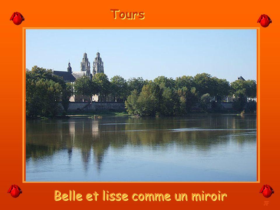 Les larges bras de la Loire et son île. JF Tours