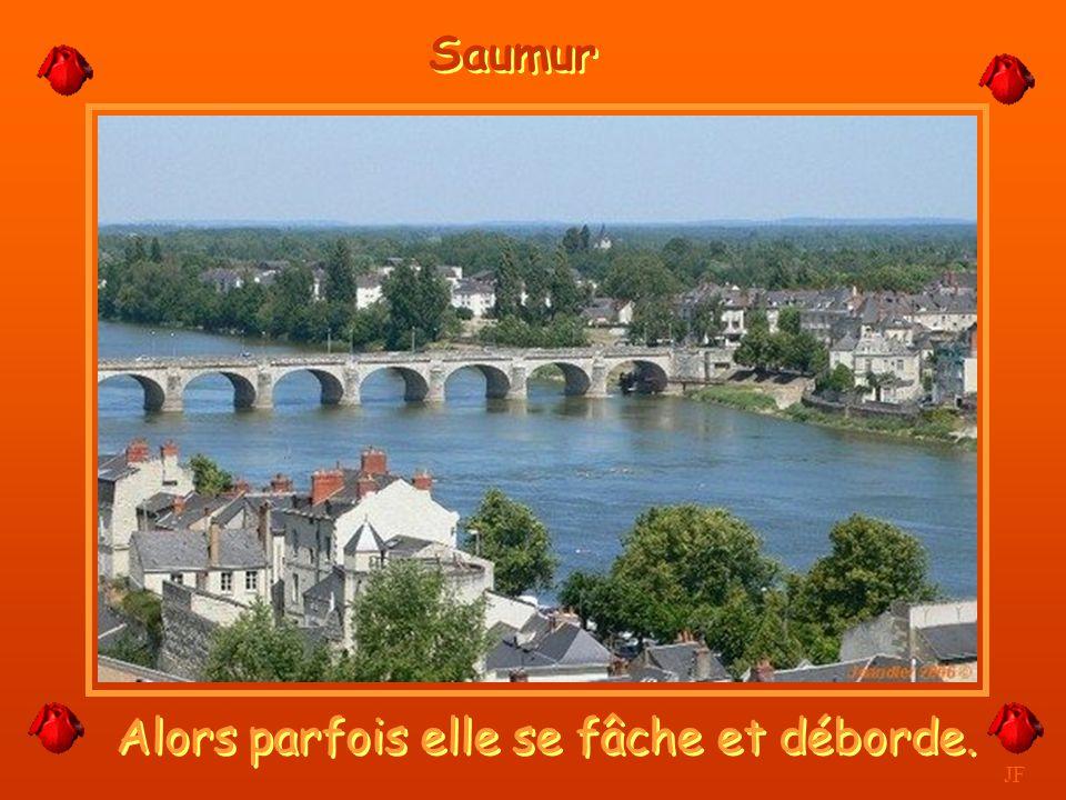 Son Château haut perché. JF Saumur
