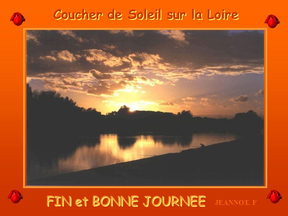 Je suis arrivée. Après cest lOcéan. JF LEmbouchure de la Loire