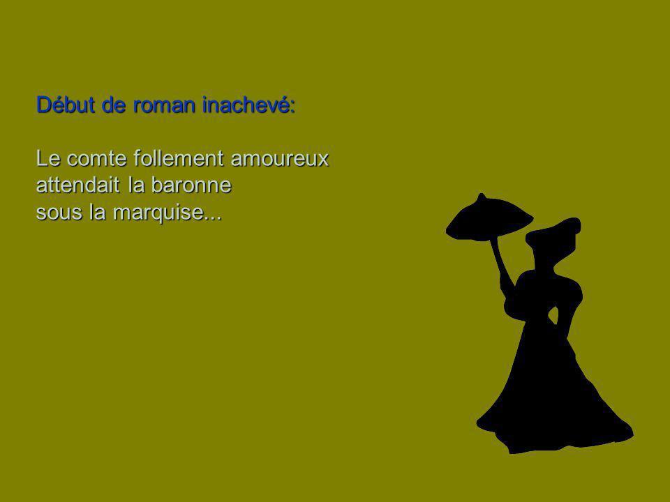 Début de roman inachevé: Le comte follement amoureux attendait la baronne sous la marquise...