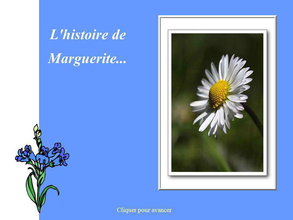L'histoire de Marguerite... Cliquer pour avancer