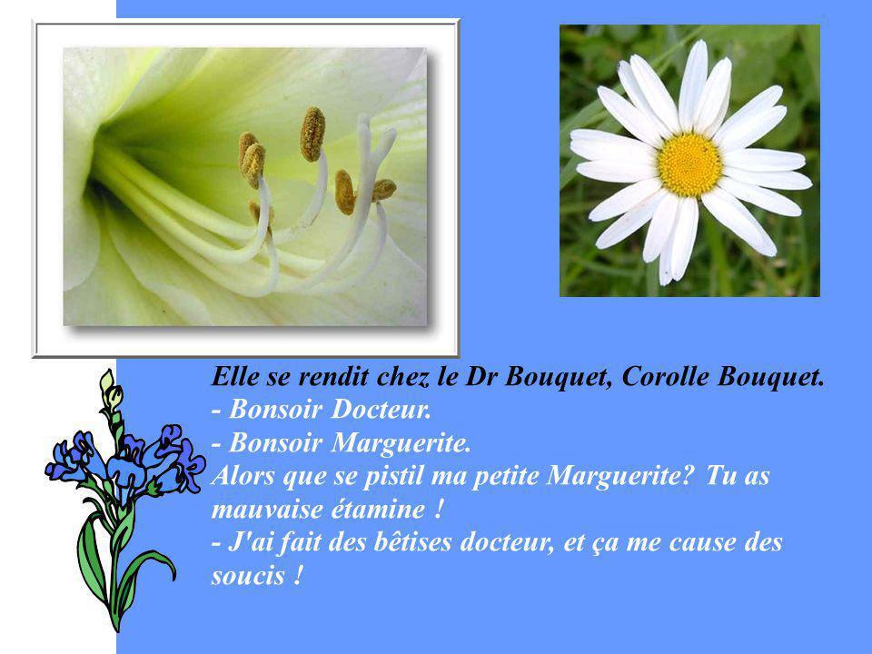 Elle se rendit chez le Dr Bouquet, Corolle Bouquet.