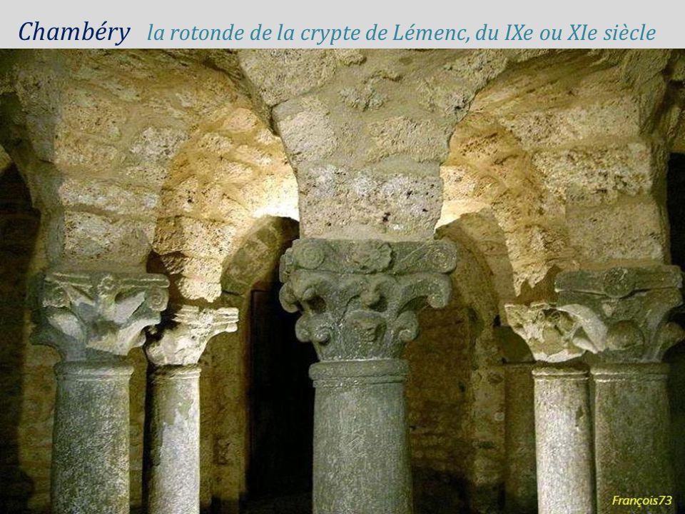 Chambéry château des ducs. de Savoie, la nuit