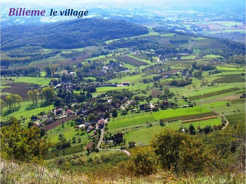 Saint-Baldoph le vignoble de Savoie